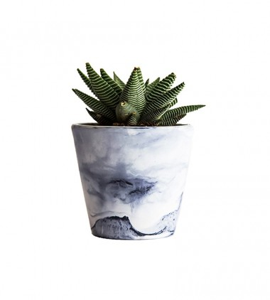Decorative Planter